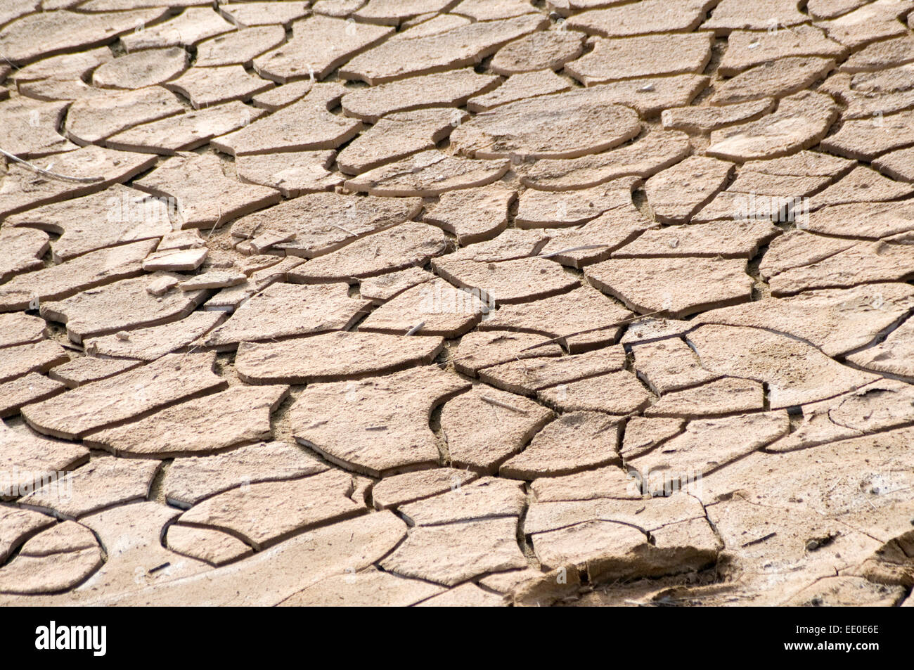 dry ground parched soil cracked earth crack cracks drought droughts hot weather heatwave heatwaves heat waves waves - Stock Image