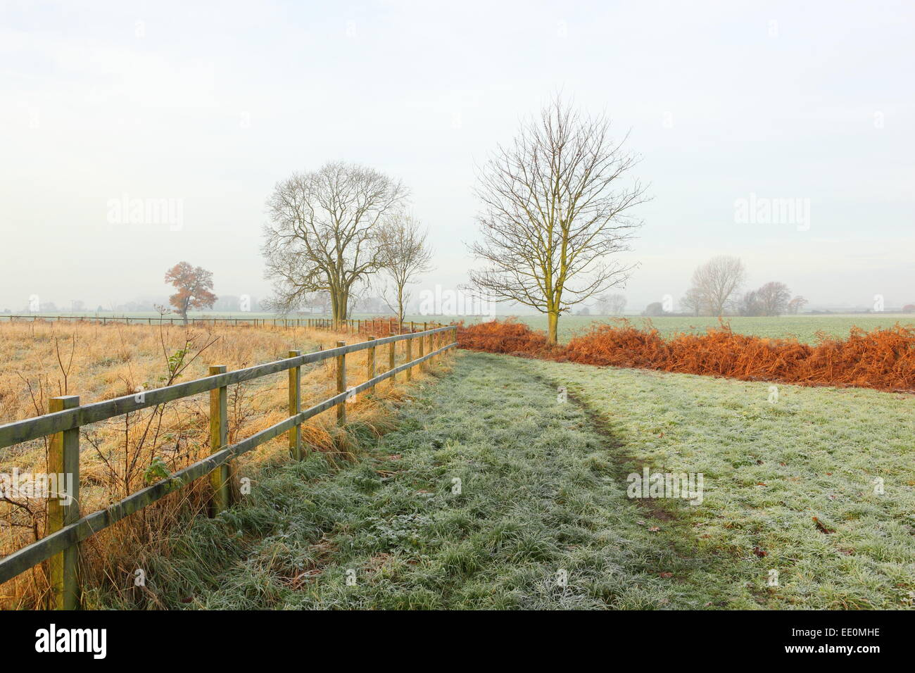 A frosty, misty, winter morning in the countryside with a grassy footpath between bracken ferns and a post and rail - Stock Image