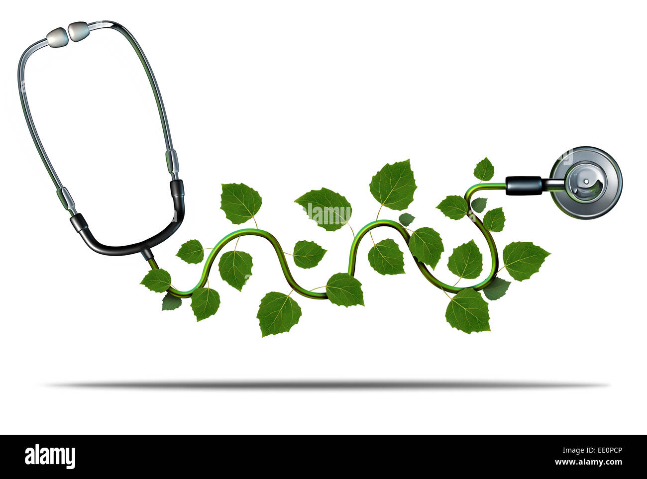 Natural medicine and alternative therapy concept as a doctor stethoscope with plant leaves growing on the medical - Stock Image