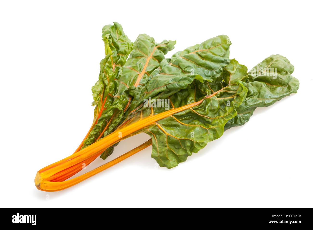 Fresh swiss chard isolated on white background - Stock Image