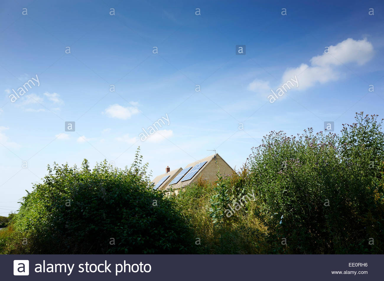 Solar panels on roof of house in Stonesfield in Spring in Cotswolds in Oxfordshire - Stock Image