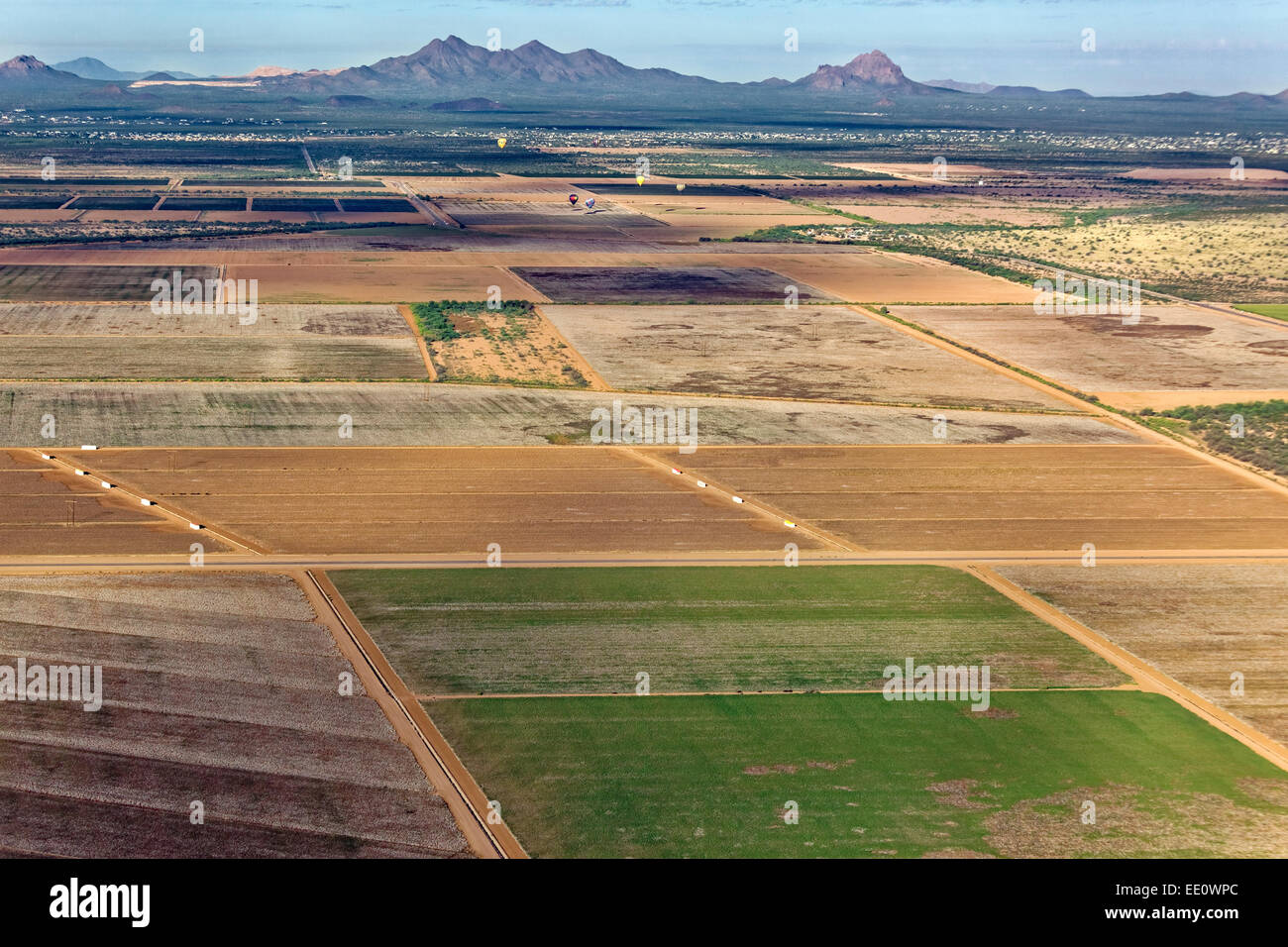 Aerial of Agriculture in Marana, Arizona - Stock Image