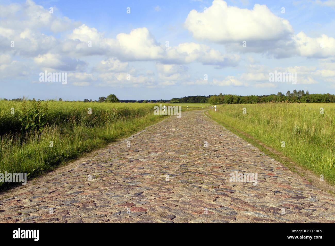 Deutschland, Mecklenburg-Vorpommern, Ostsee, Insel Ruegen, Kopfsteinstrasse - Stock Image