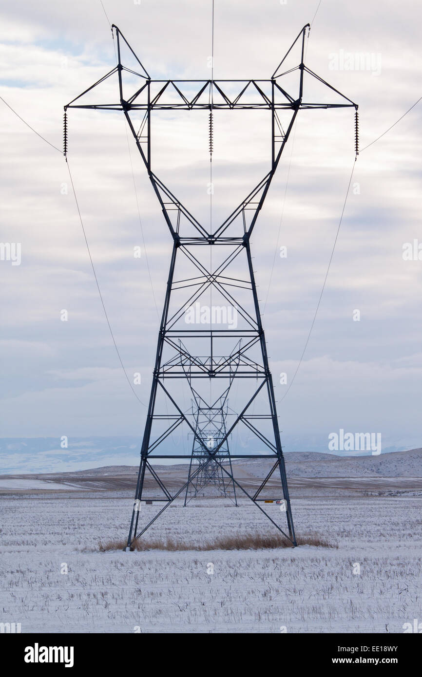 Line of overhead high tension power lines in a snowy field - Stock Image