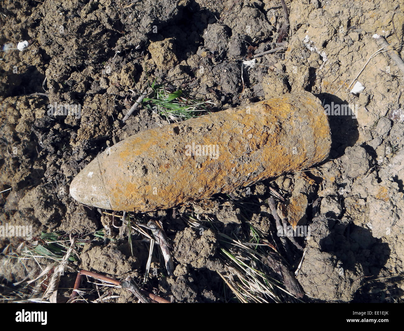 'Iron Harvest', World War One high explosive shell, unexploded, dug up during tree extraction, Verdun Battlefield, - Stock Image