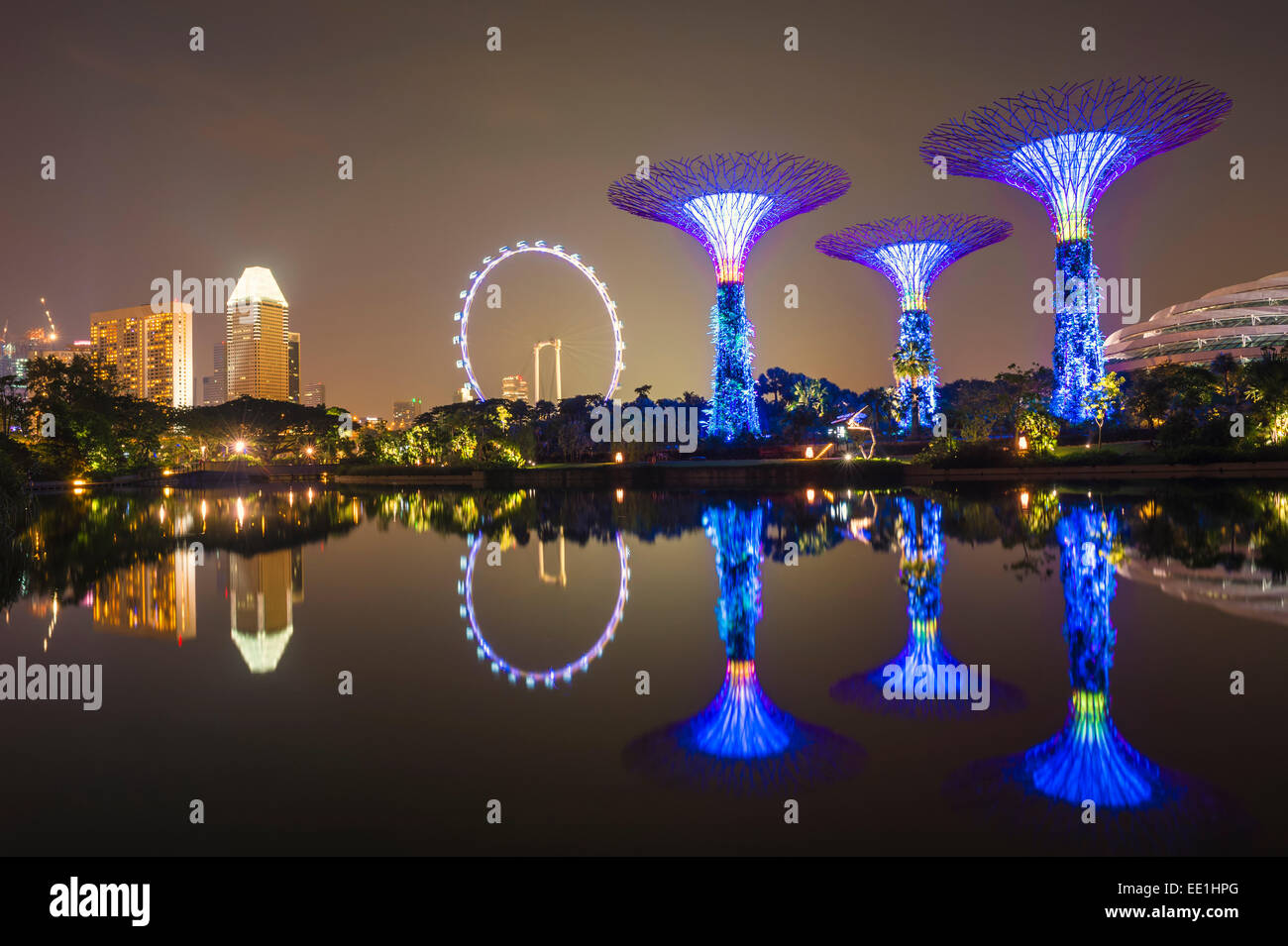 Gardens by the Bay reflecting in the water at night, Singapore, Southeast Asia, Asia - Stock Image