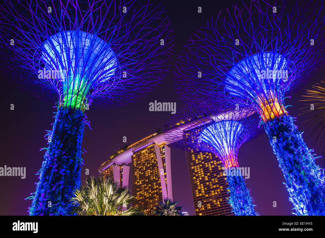 Gardens by the Bay and Marina Bay Sands Hotel at night, Singapore, Southeast Asia, Asia - Stock Image