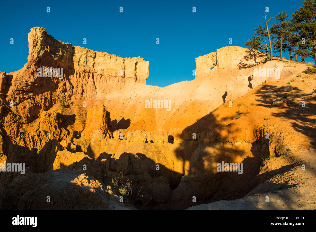 Early sunrays shining on the pinnacles of the Bryce Canyon National Park, Utah, United States of America, North - Stock Image