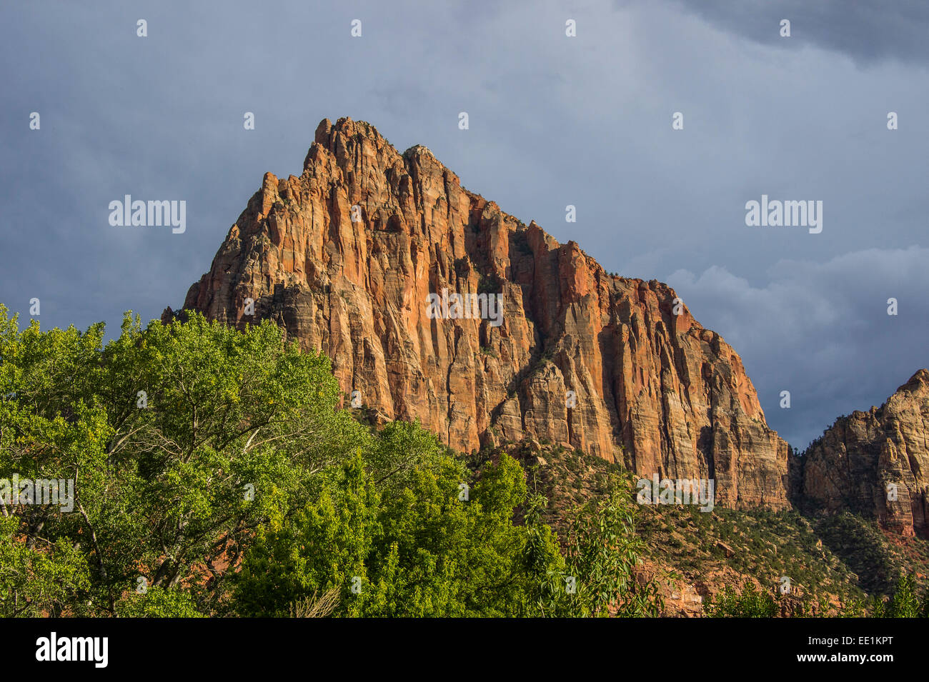 Late sunlight glowing on the rocks of the Zion National Park, Utah, United States of America, North America - Stock Image