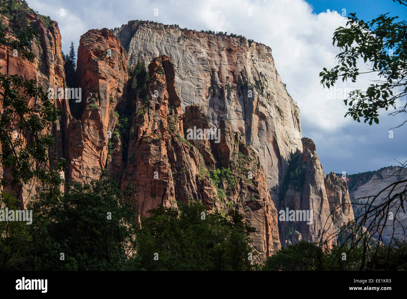 The towering cliffs of the Zion National Park, Utah, United States of America, North America - Stock Image