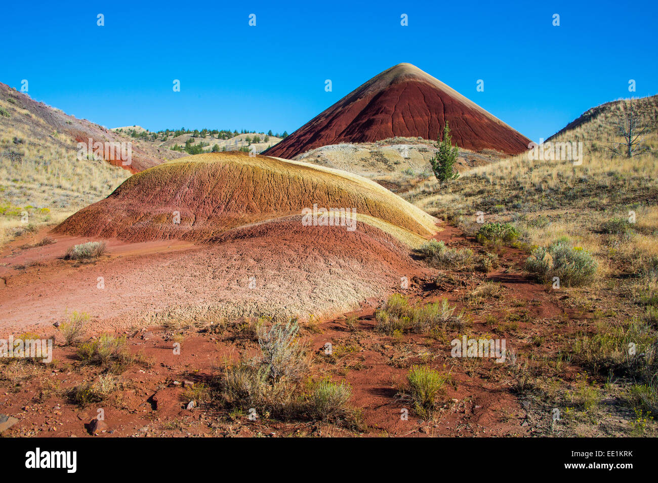 Multicoloured strata hill in the Painted Hills unit in the John Day Fossil Beds National Monument, Oregon, USA - Stock Image