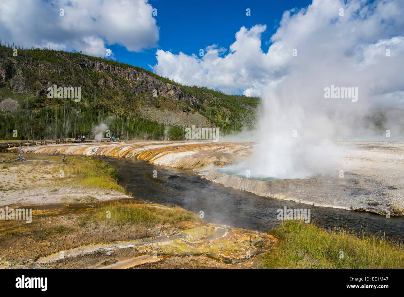 Cliff Geyser erupting in the Black Sand Basin, Yellowstone National Park, UNESCO World Heritage Site, Wyoming, USA - Stock Image