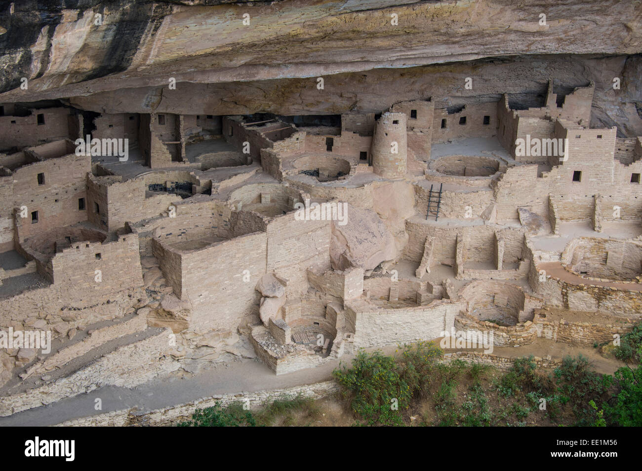 The Cliff Palace Indian dwelling, Mesa Verde National Park, UNESCO World Heritage Site, Colorado, United States - Stock Image