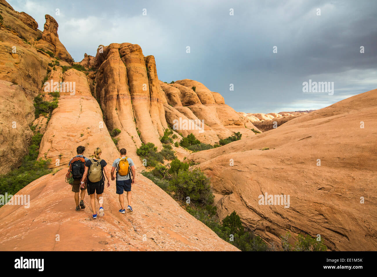 Trekkers walking along the Slickrock trail near, Moab, Utah, United States of America, North America - Stock Image
