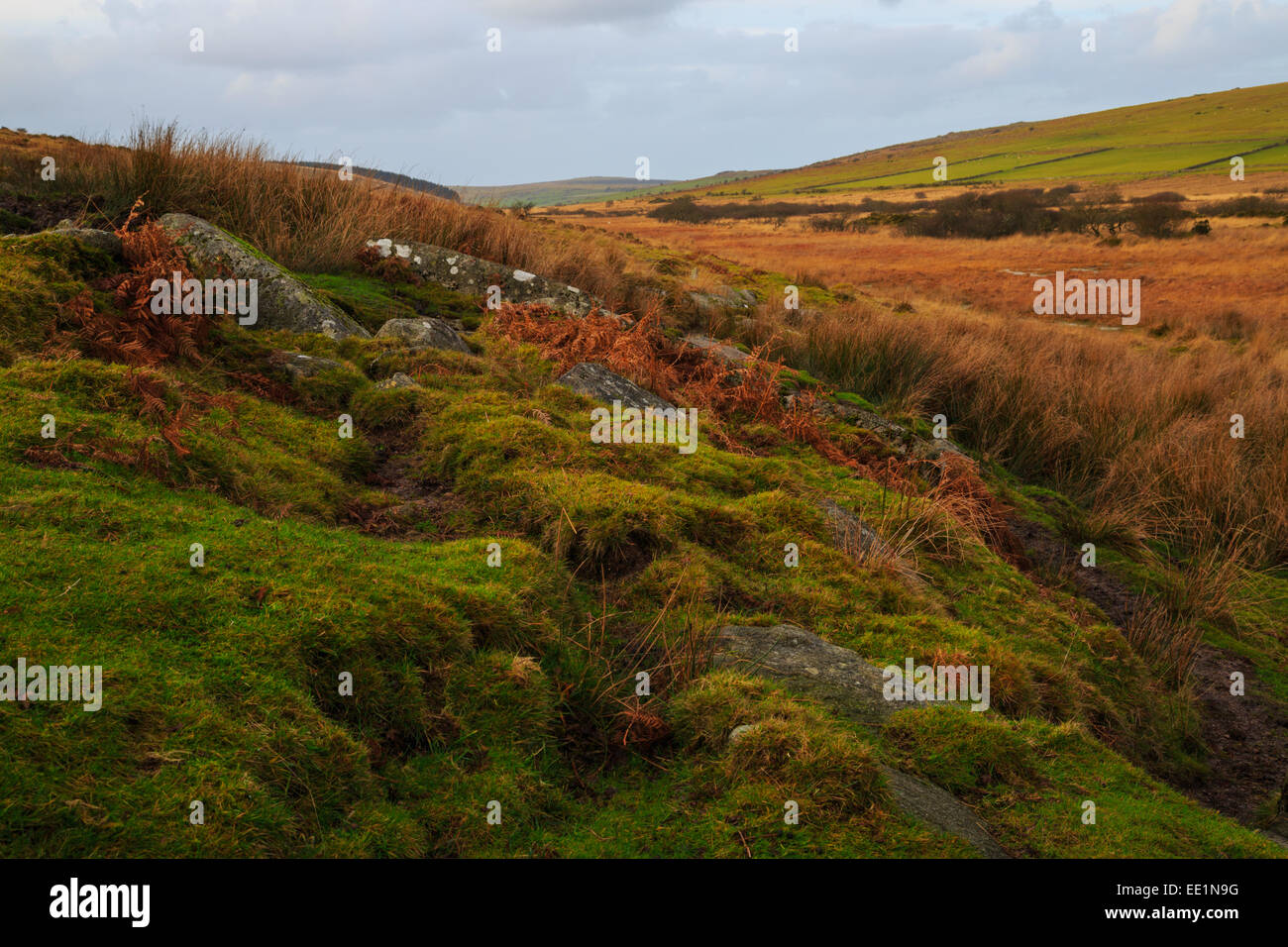 Bodmin moor from Gold diggings quarry - Stock Image