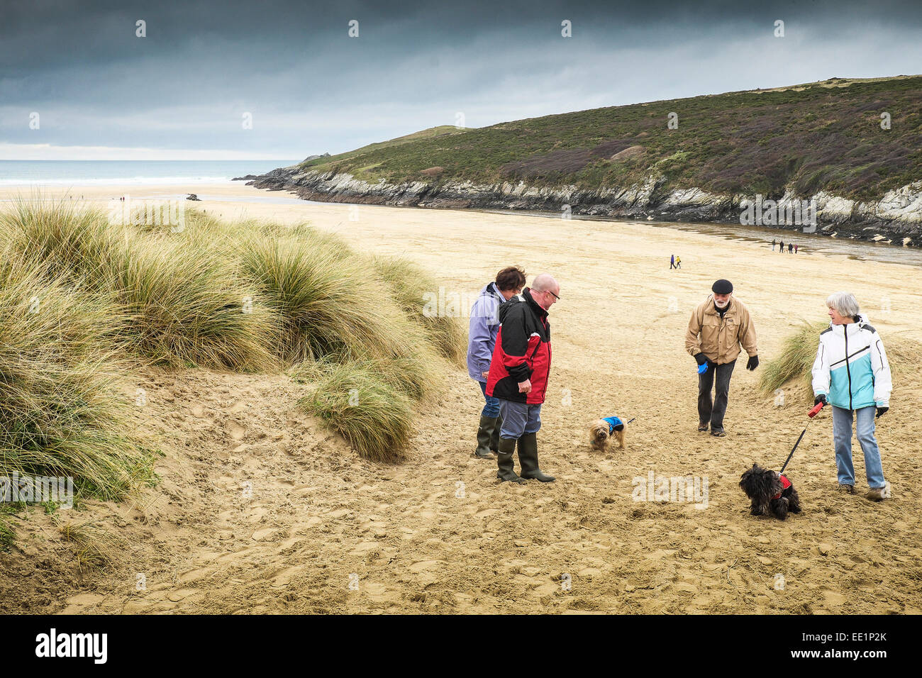 Dog walkers on Crantock Beach in Newquay, Cornwall. - Stock Image