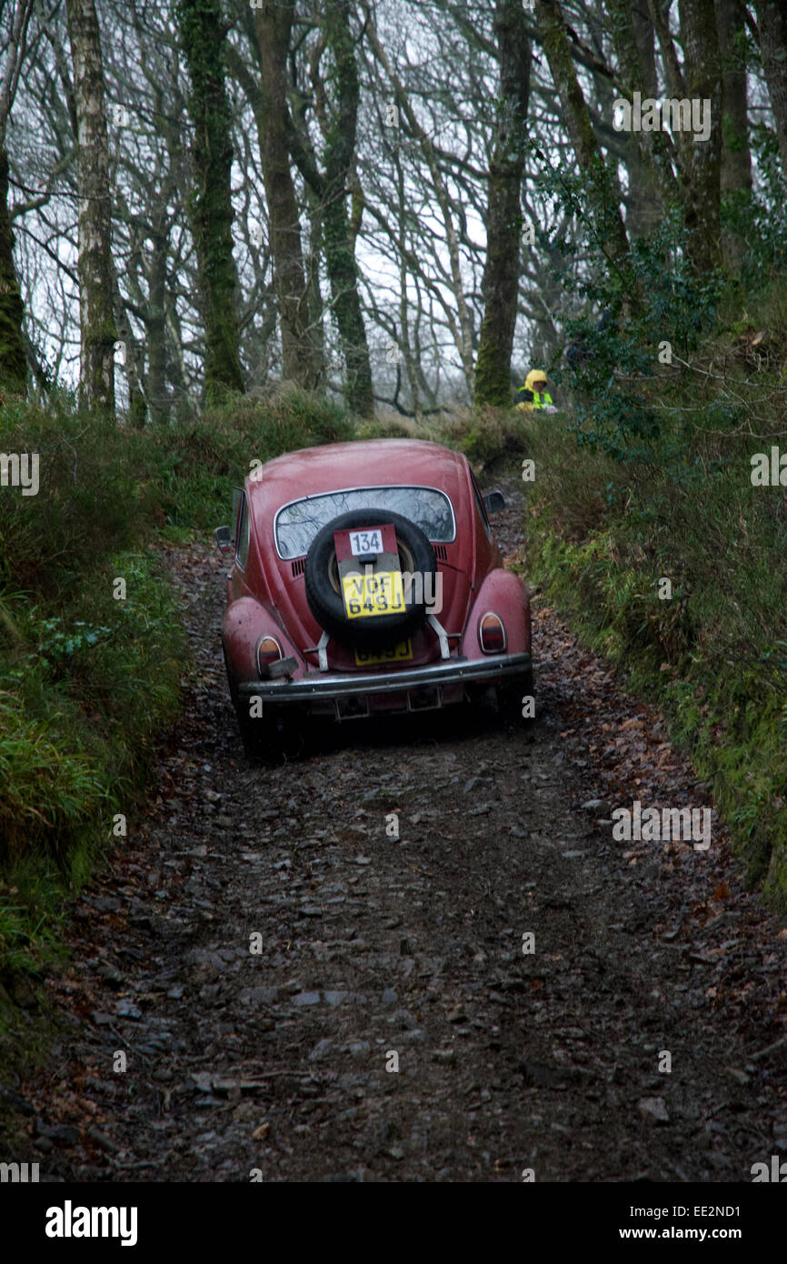 Car competitors on the Fingle Section of the 2015 Exeter Trial. - Stock Image