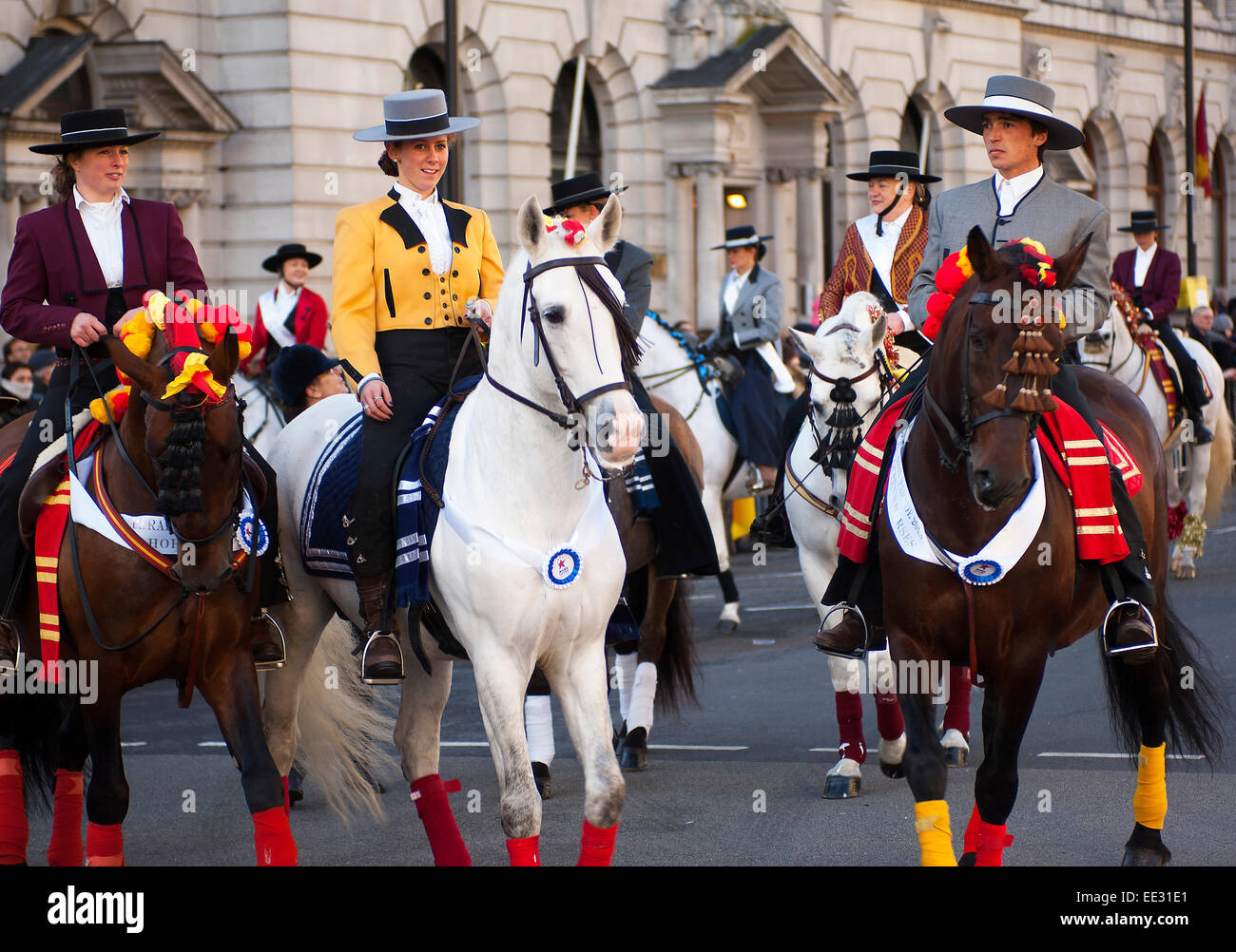 The Queen's horses appeared in the 2013 New Year's Day Parade, ridden by a colourful variety of different horsemen - Stock Image