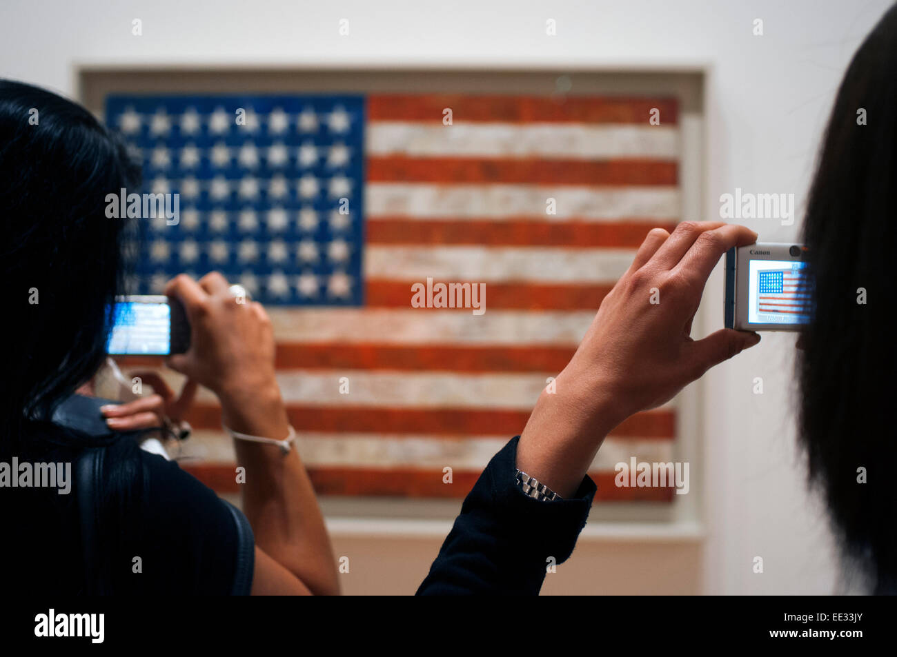 Moma Museum Museum Goers Contemplate American Flag By
