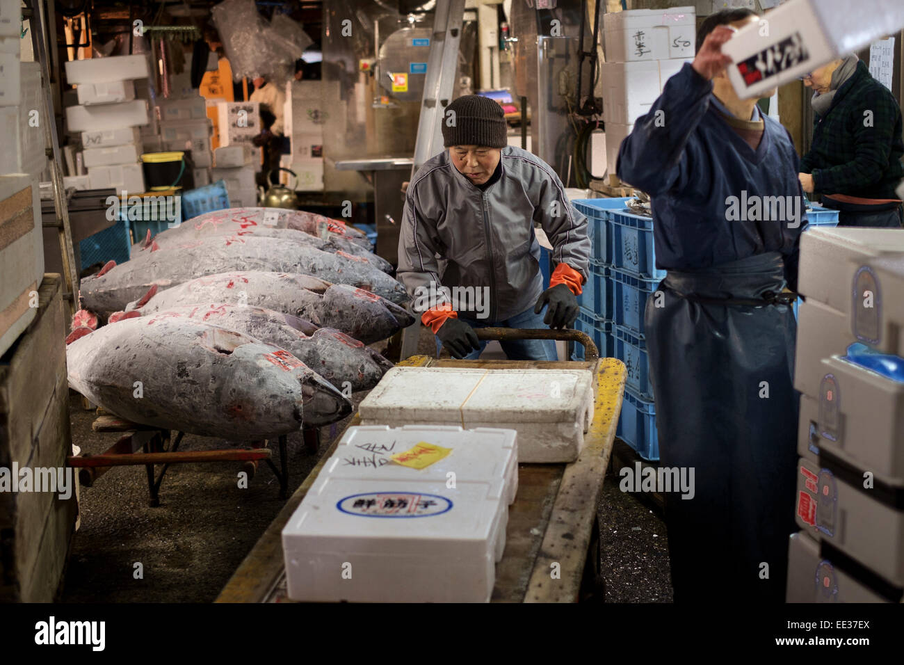 The Tsukiji Fish Market, Tokyo, Japan. The largest wholesale fish and seafood market in the world. The market handles Stock Photo