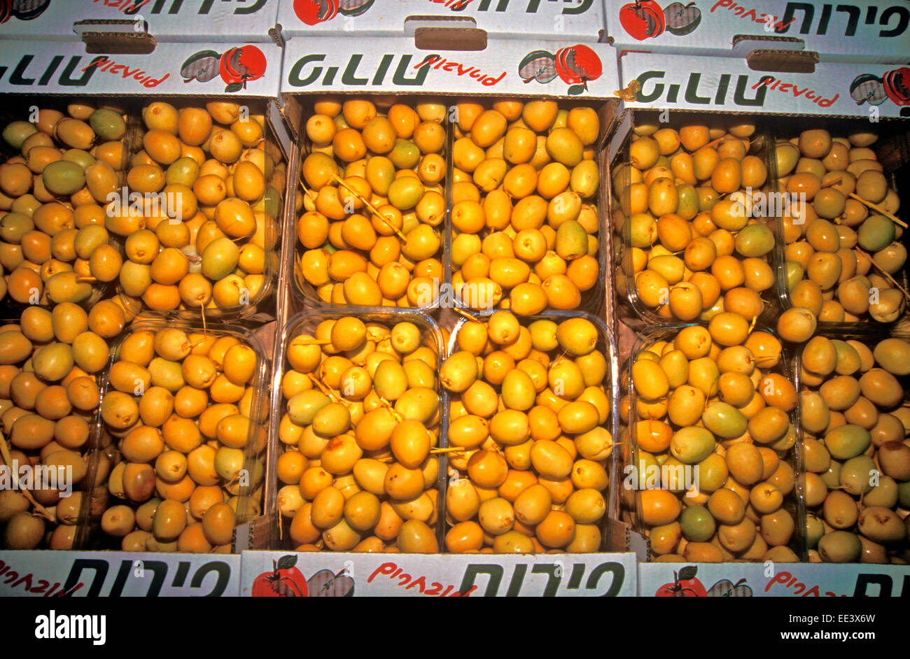 Yellow dates in boxes, Israel - Stock Image