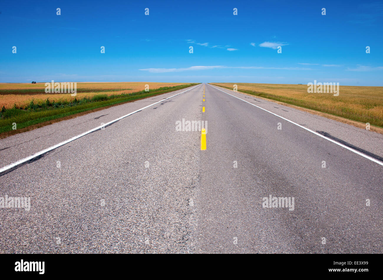 Endless empty road - Stock Image