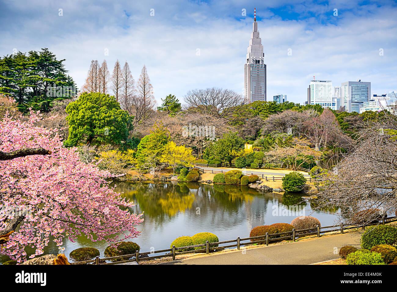 Shinjuku Gyoen Park, Tokyo, Japan in the spring. - Stock Image