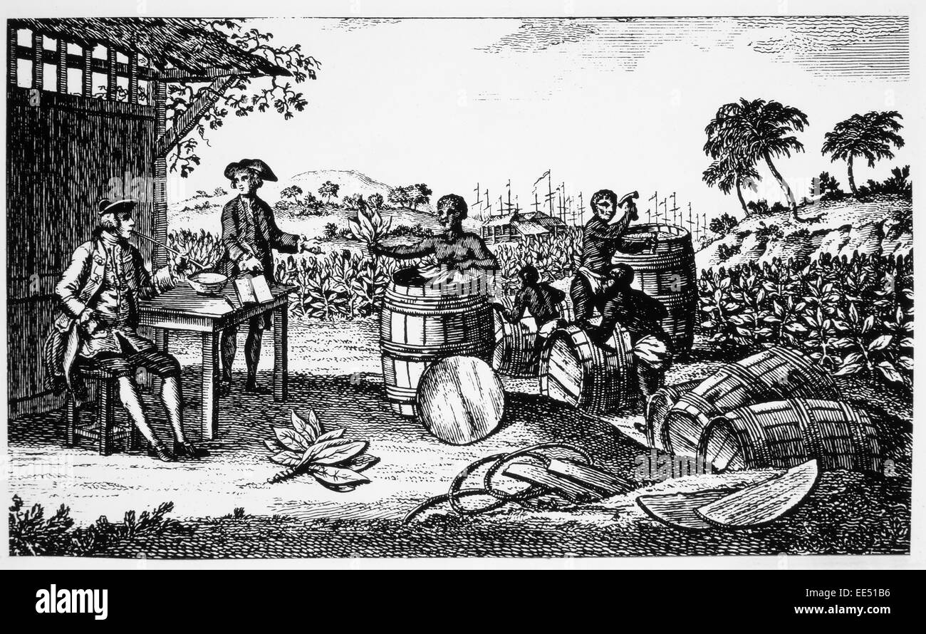 Tobacco Being Exported from Jamestown, Virginia, Engraving, 1620 - Stock Image