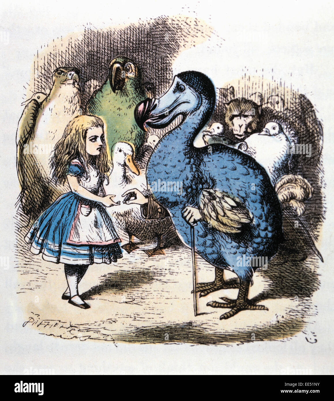 Alice And The Dodo Alice S Adventure In Wonderland By