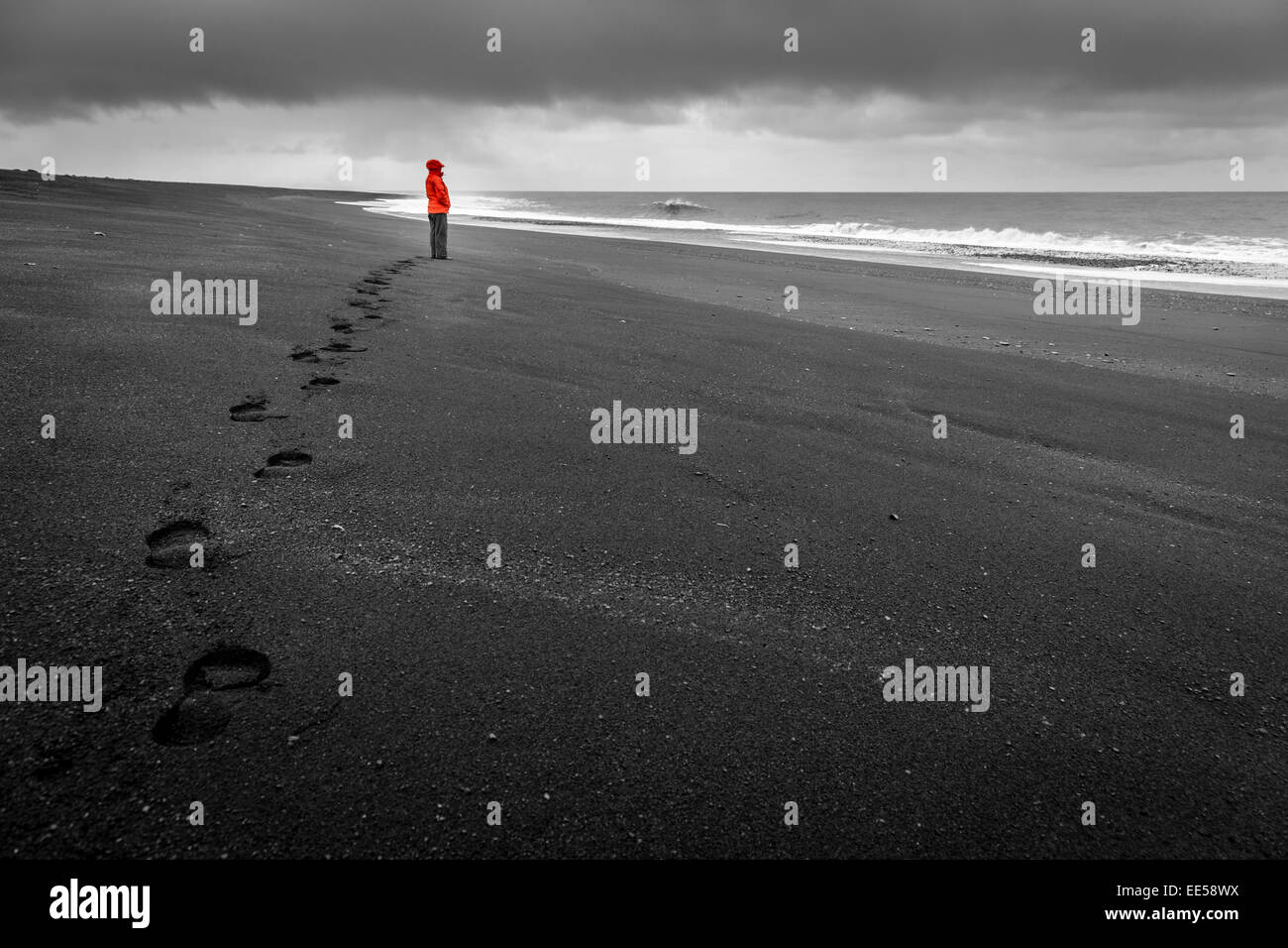 A woman is watching the waves on a black sand beach in the south of Iceland - Stock Image