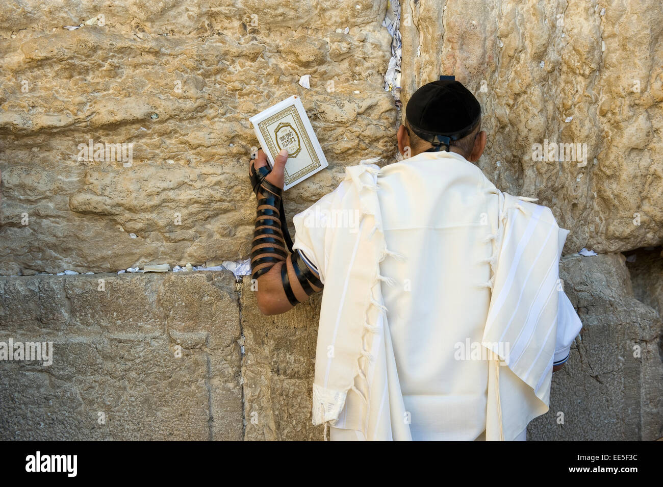 JERUSALEM, ISRAEL - OCT 06, 2014: A jewish man with the torah in his hand is praying against the western wall in - Stock Image