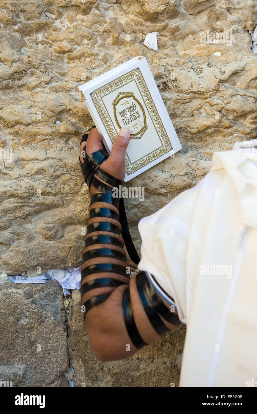 JERUSALEM, ISRAEL - OCT 06, 2014: A jewish man with the torah in his hand and tefillin around his arm is praying - Stock Image