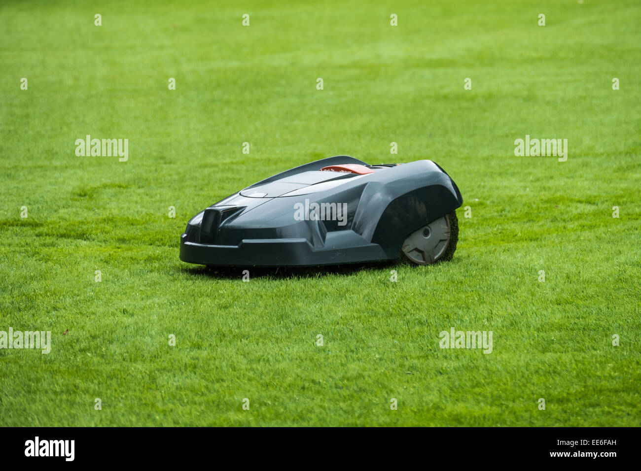 Robotic lawn mower on grass, side view - Stock Image