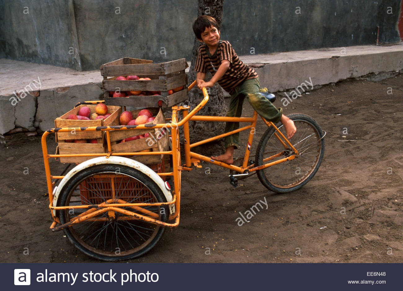 Mexcaltitan, Child on a carrier-tricycle loaded with mangos - Stock Image