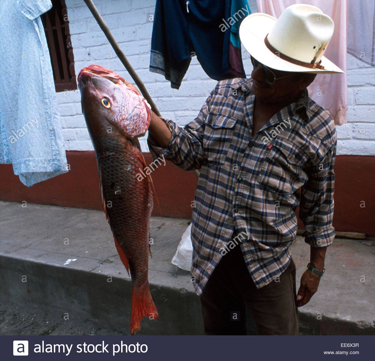 Mexcaltitan, Fisherman admiring catch - Stock Image