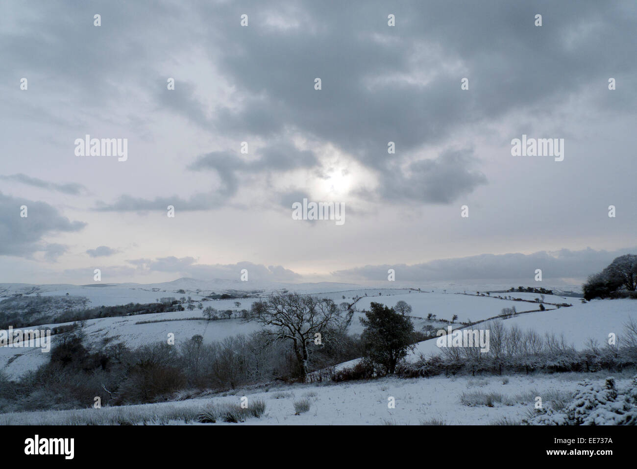 Carmarthenshire, Wales, UK. 14th Jan 2015. Snow fall overnight in Carmarthenshire is greeted by crisp cold weather - Stock Image