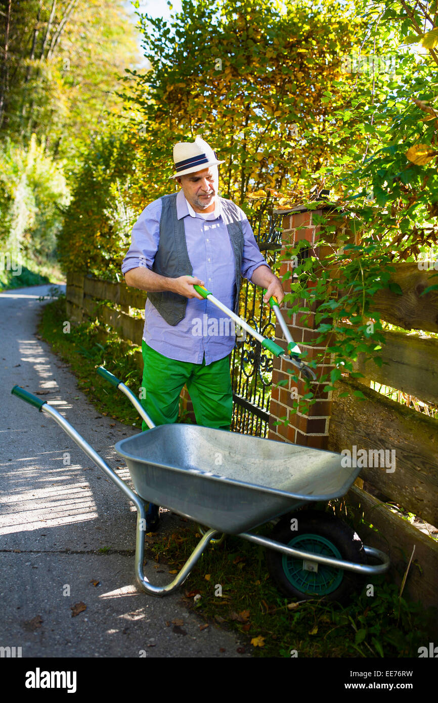 Senior man trimming plants by garden fence, Munich, Bavaria, Germany - Stock Image