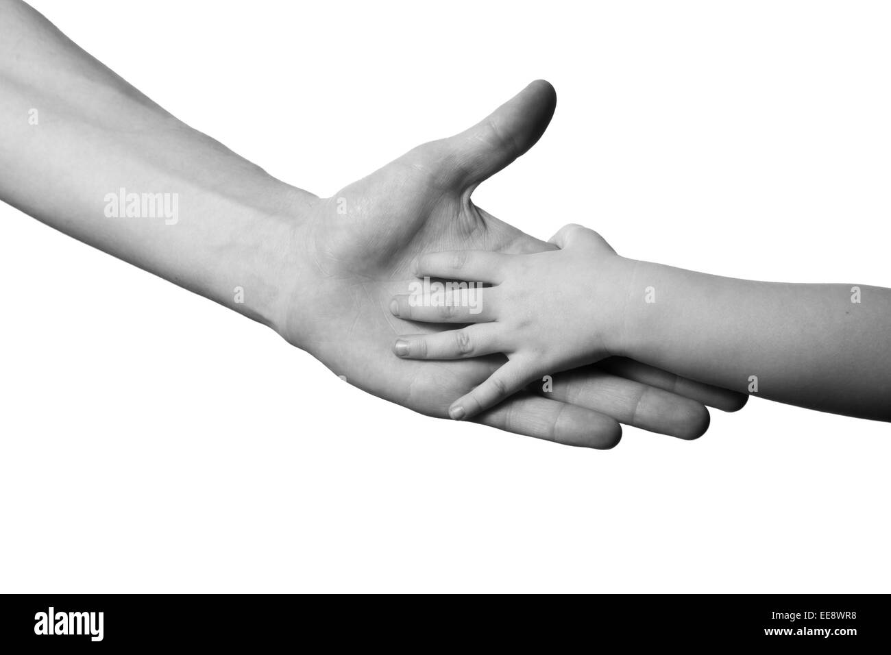children and man hands isolated on white black and white - Stock Image