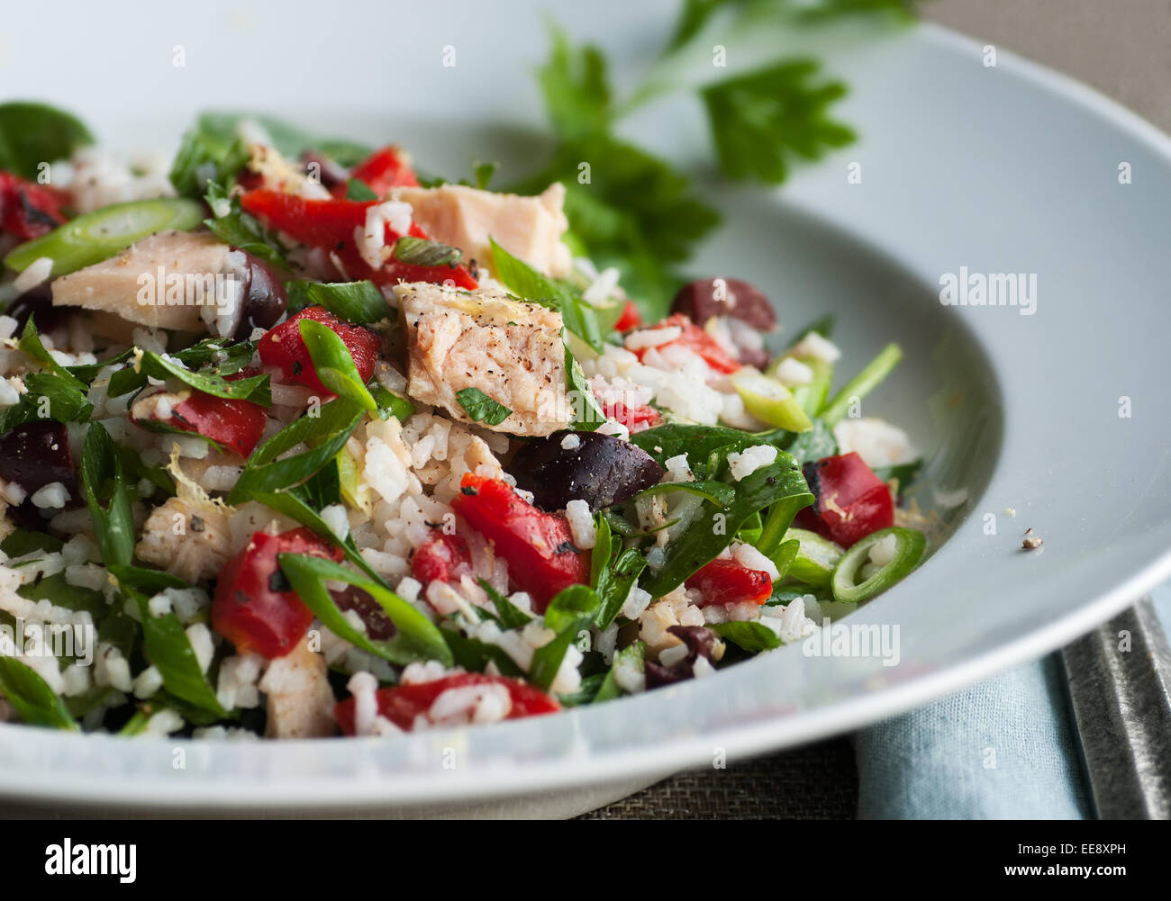 Albacore tuna salad with rice and vegetables - Stock Image