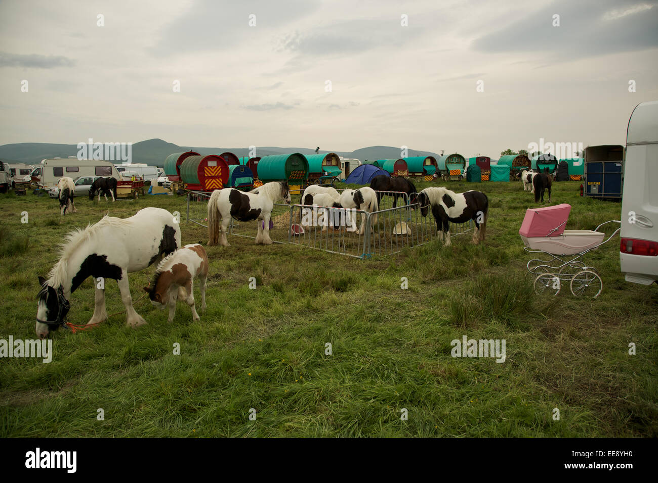 Appelby Horse Fair held every June in Appelby-in-Westmoorland,Cumbria,England.Around 15,000 gypsies and travellers - Stock Image