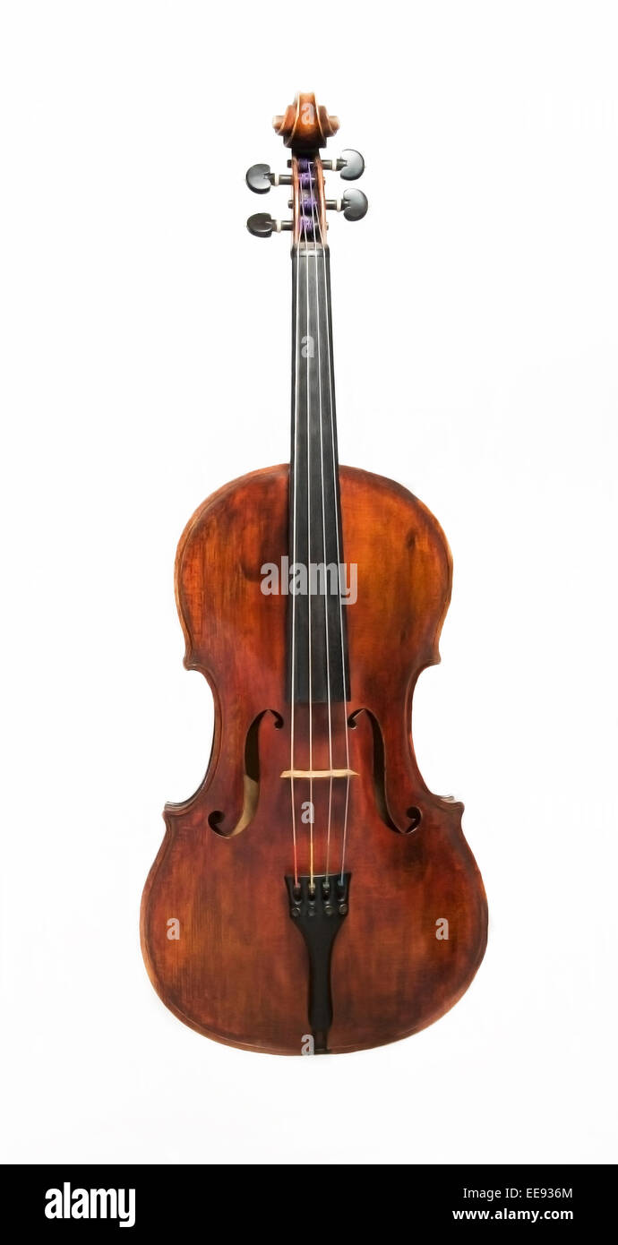 Front View of a Viola - Stock Image