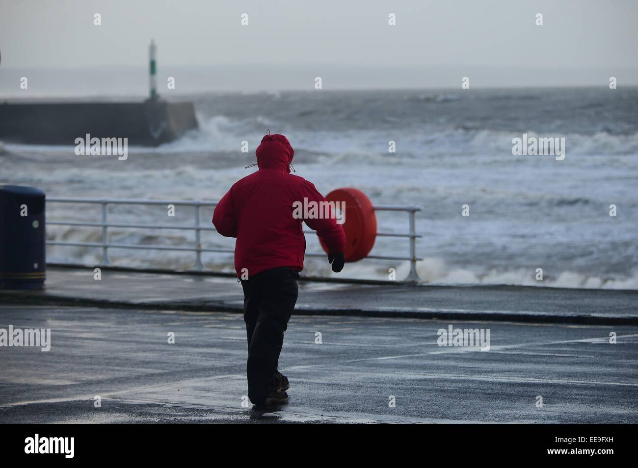 Aberystwyth, Wales, UK. 15th January, 2015. UK weather. Overnight stormy weather and driving rain in Aberystwyth - Stock Image