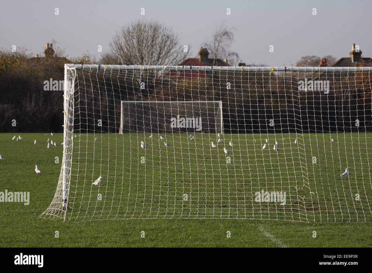 GOAL FOOTBALL PITCH - Stock Image