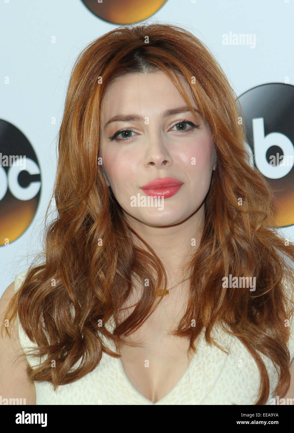 2019 Elena Satine naked (26 photos), Pussy, Is a cute, Twitter, braless 2017