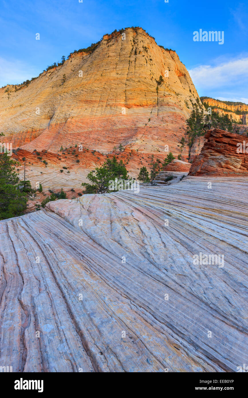 Checkerboard Mesa is located just east of the Zion National Park. - Stock Image