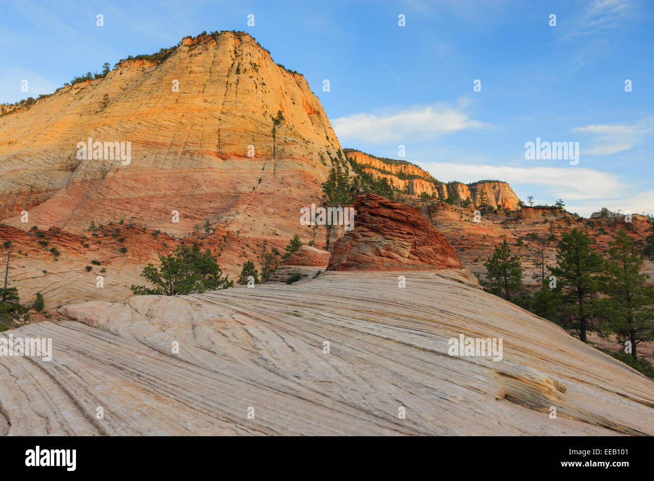 Checkerboard Mesa is located just east of the Zion National Park, Utah, USA - Stock Image