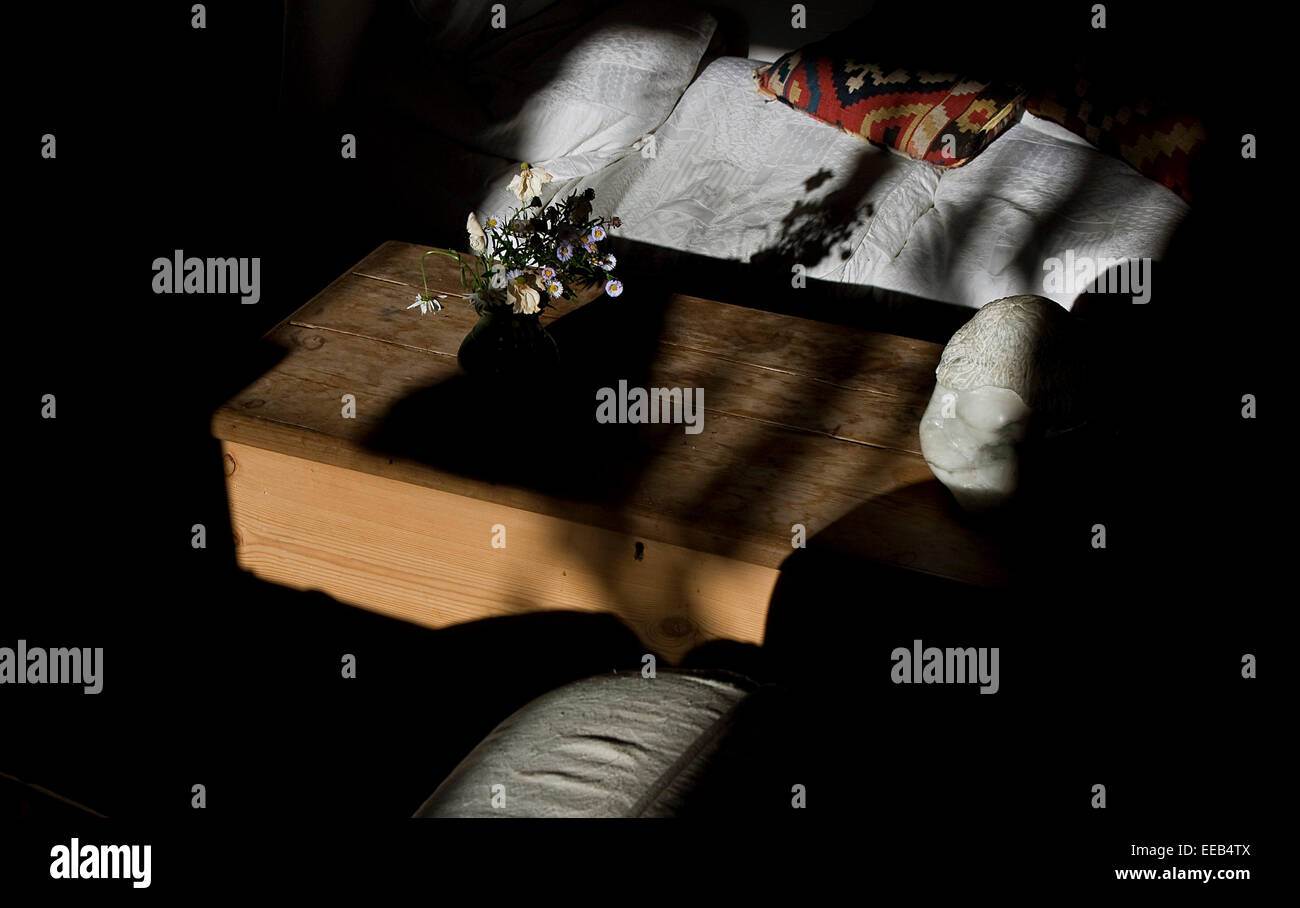 Daisy's on wooden box next to sofa and cushion shadows and sunlight - Stock Image
