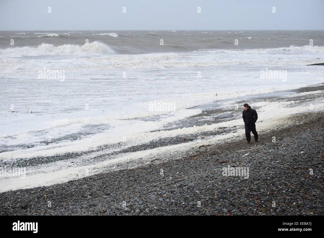 Aberystwyth, Wales, UK. 15th January, 2015. UK Weather: A solitary man walks along the beach as gale force winds - Stock Image