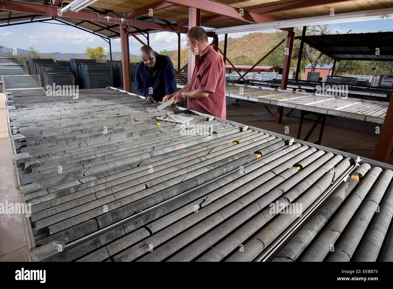 Geologists logging cores from exploration drill samples on mine where Nickel and Copper will be mined via open cast - Stock Image