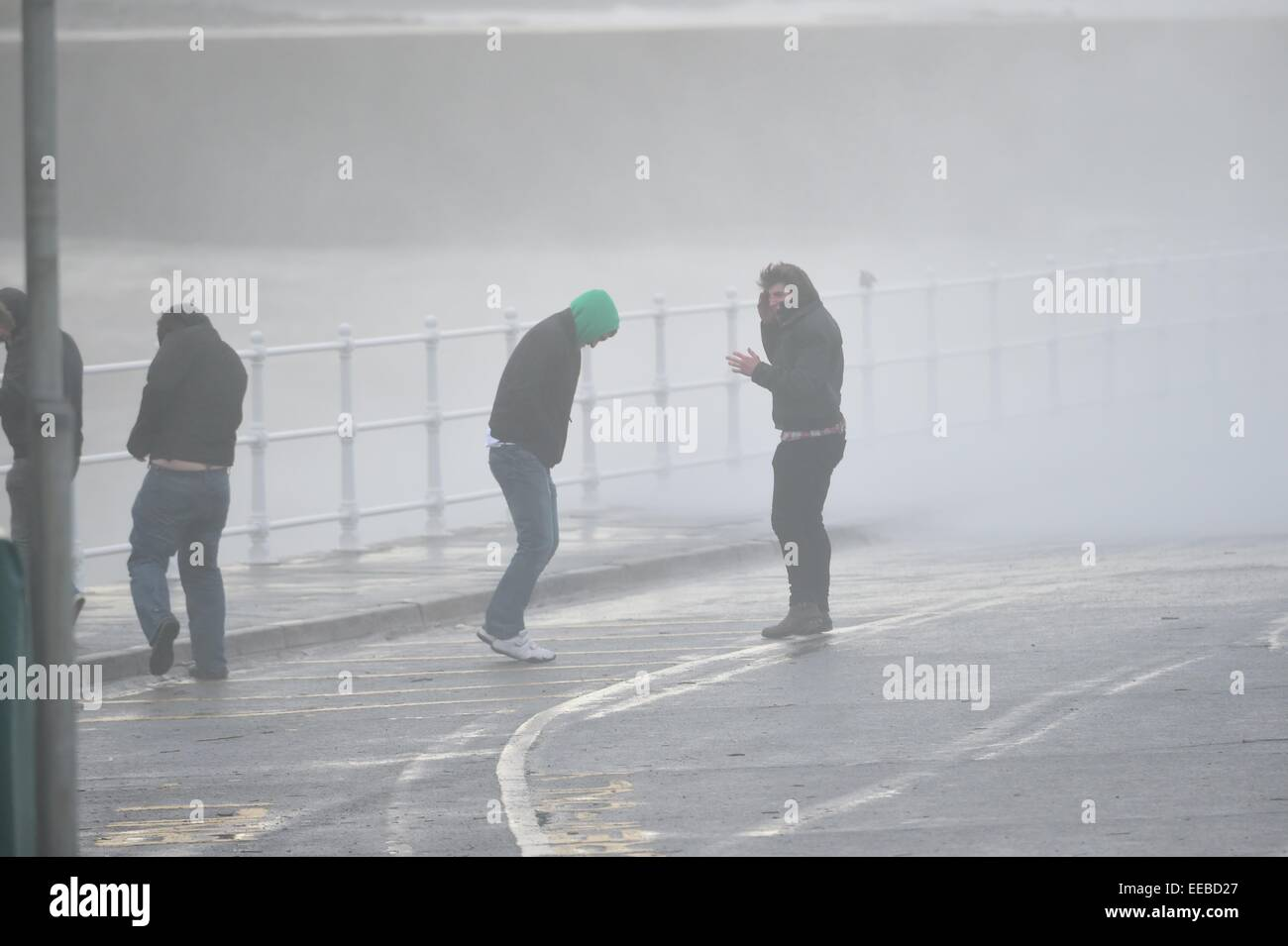 Aberystwyth, Wales, UK. 15th January, 2015. UK Weather: A group of young men get soaked by the sea spray as gale - Stock Image